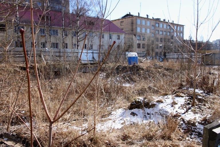 А это котлован за забором, в котором уже растутдеревья и кусты. А митингов почему-то нет...
