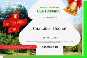 Выпускникам Карелии предложили вместо запуска шаровпосадить деревья