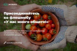 В Карелии стартовал экологический флешмоб «У нас много общего!»