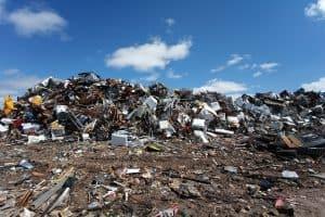 В Карелии планируют разделять мусор на две фракции – органику и неорганику