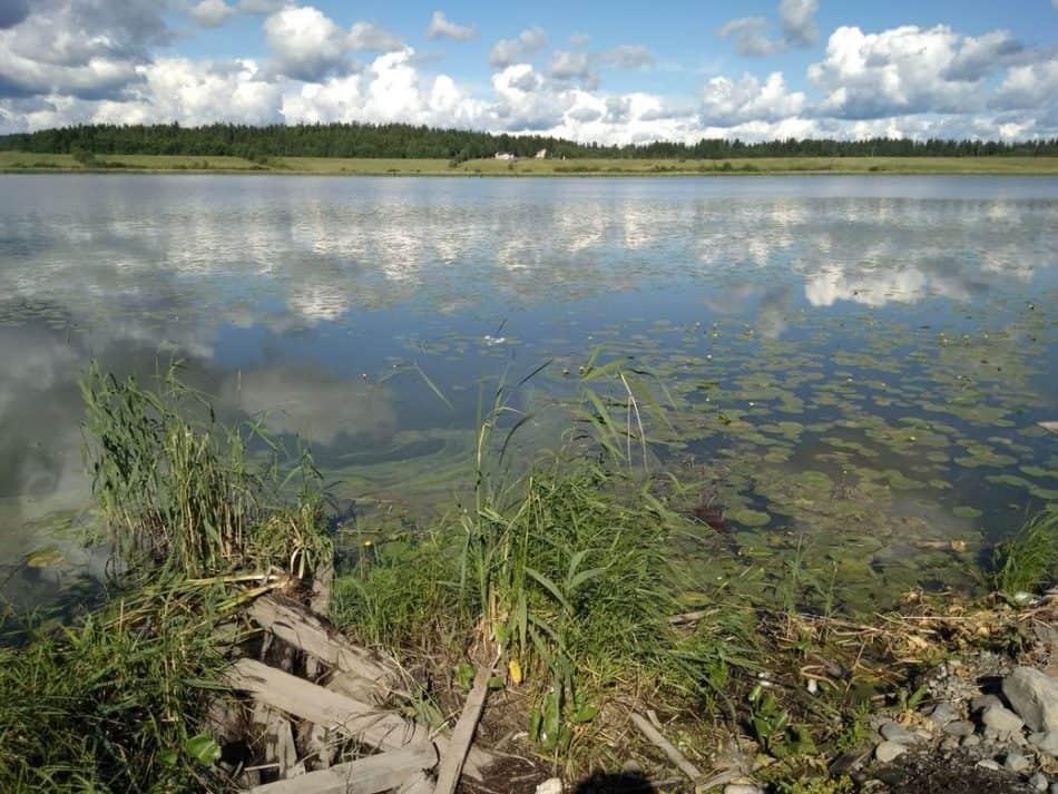 Озеро Айранне, Сортавала. Лето 2017 года