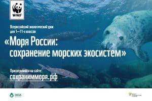Учителя Карелии расскажут школьникам о сохранении морских экосистем