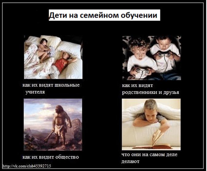 Дети на семейном обучении. Слайд из статьи: talisha.ru