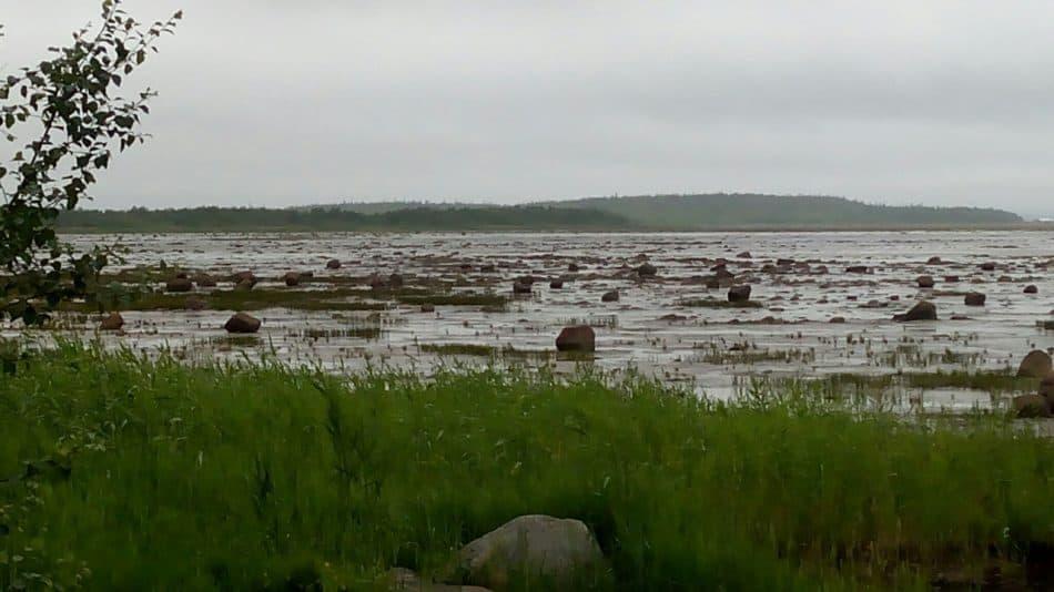 Белое море. отлив, Куйпога