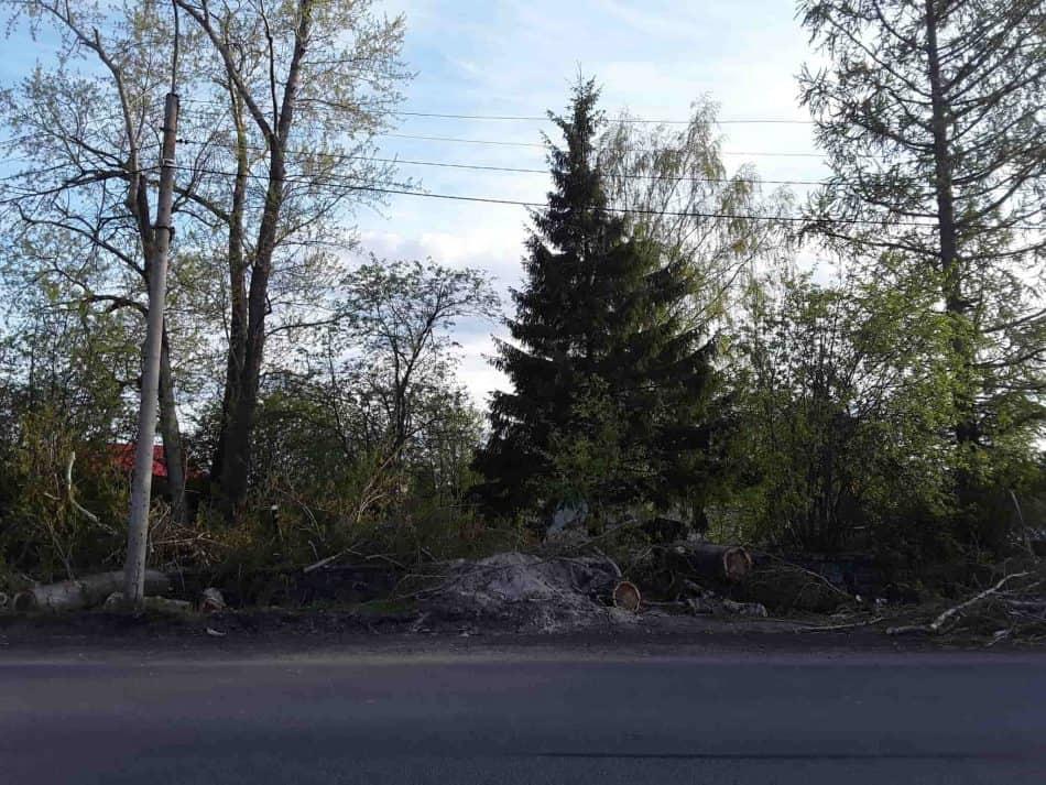 Так выглядит кладбище со стороны автодороги Петрозаводск-Гирвас. Указателя на кладбище нет. Фото Екатерины Лобастовой