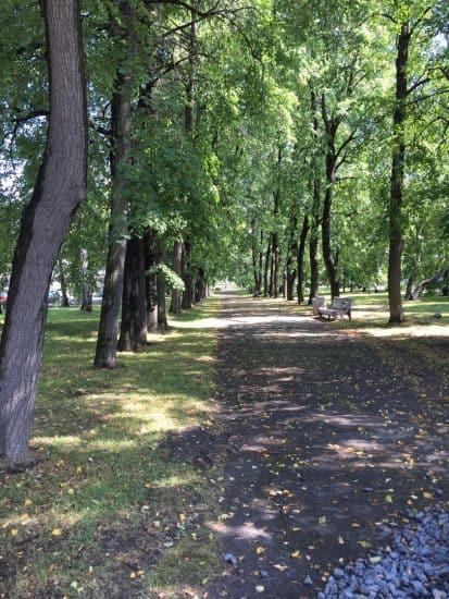 Левашовский бульвар в наши дни. Фото: Яна Жемойтелите
