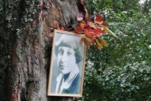 Встречу у Цветаевского костра в Петрозаводске провели в экстремальных условиях