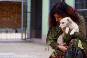 Меньше мусора — больше добра и уюта для бездомных животных