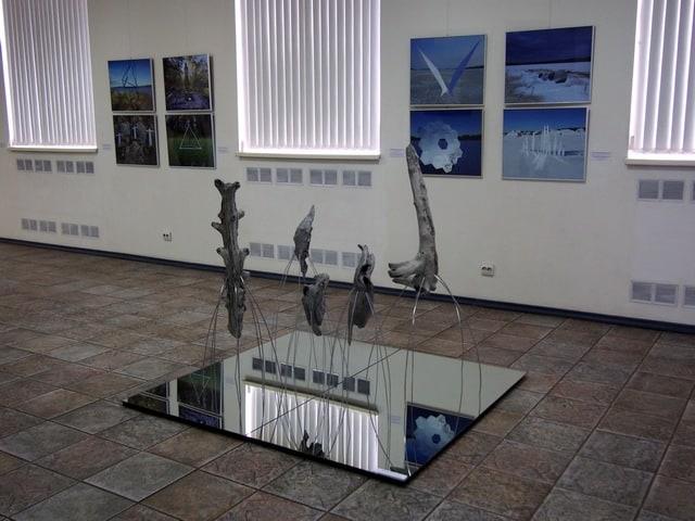 В Петрозаводске открылась выставка московских художников Лилии Шелл и Антона Крафтскского под названием: «Интроспекция. От морской звезды к небесной»