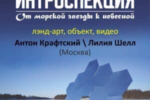 В Петрозаводске покажут лэнд-арт инсталляциимосковских художников