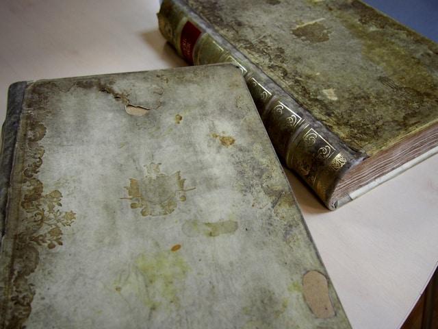 Так называемая «Медная библия» 1731 года, принадлежавшая Мелании Сумароковой