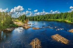 В Карелии. Фото: petroglyphcon.ru