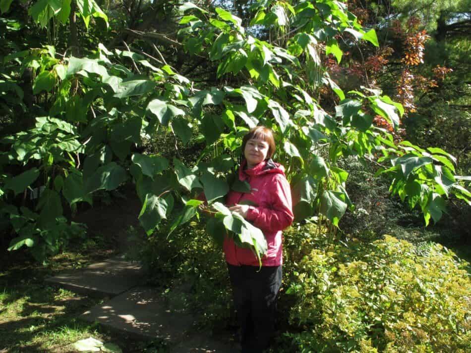 Елена Платонова в Приморском парке на Дальнем Востоке. Фото из личного архива