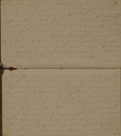 Образец стенограммы А. Г. Достоевской 1867 года. Страницы стенографического дневника (Отдел рукописей Российской государственной библиотеки)