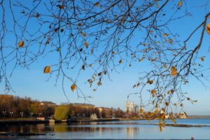 Петрозаводск, октябрь 2021 года. Фото Надежды Еремеевой