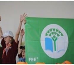 зеленый флаг