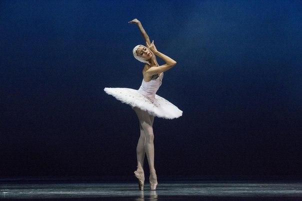 """Сен-Санс, """"Умирающий лебедь"""" - Анастасия Чумакова"""