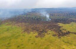Лесные пожары в Карелии. Июль 2021 года. Фото Ильи Тимина